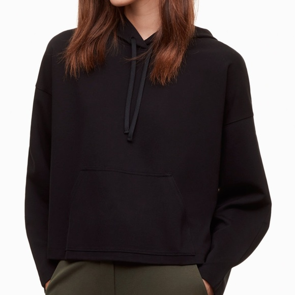 Aritzia Tops - The Group by Babaton Cropped Hoodie